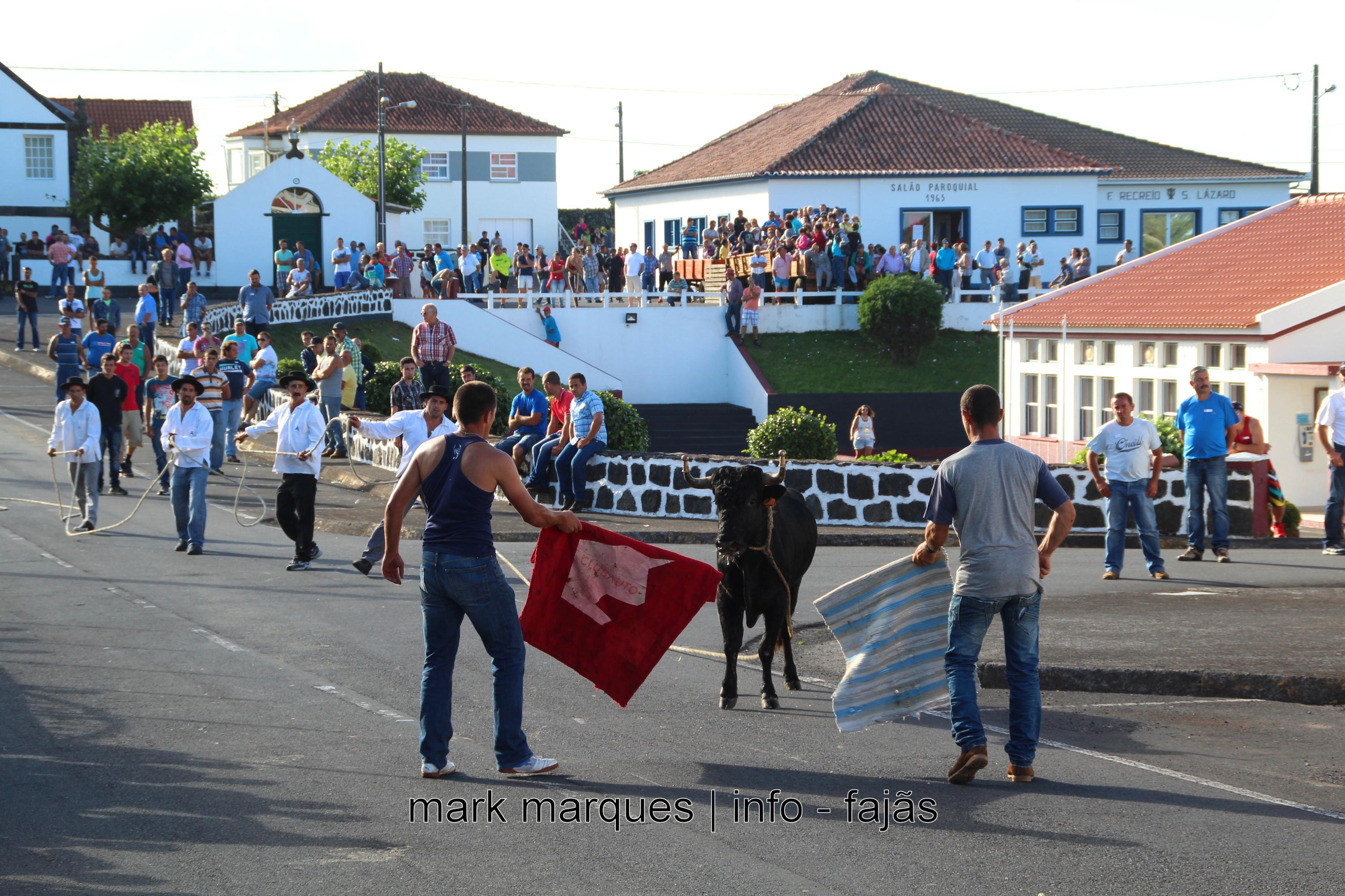 TOURADA À CORDA – NORTE PEQUENO – ILHA DE SÃO JORGE. (reportagem fotográfica)