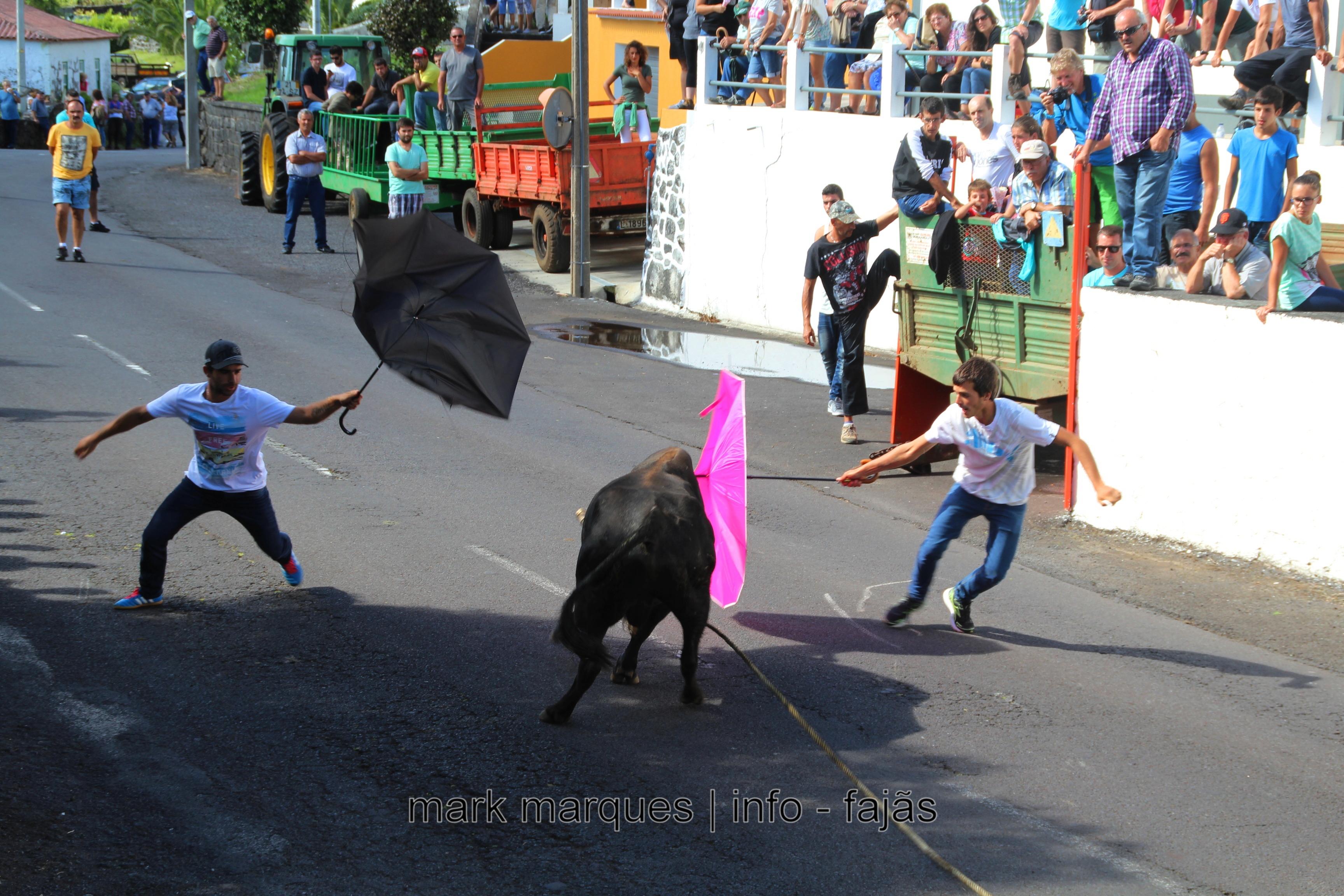 TOURADA À CORDA – BOA HORA / SANTO AMARO – ILHA DE SÃO JORGE. (reportagem fotográfica)