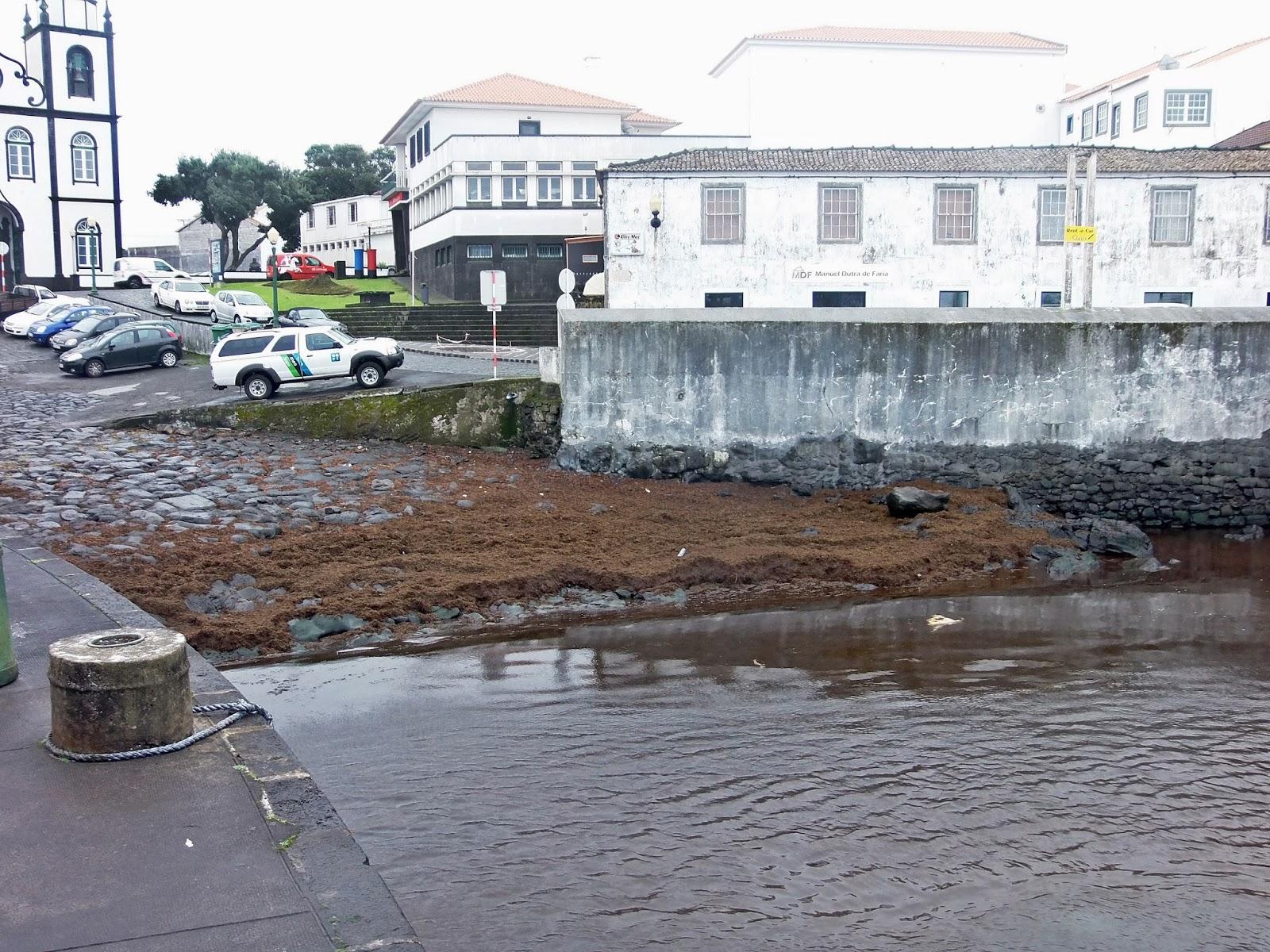 Governo dos Açores antecipa análises à qualidade da água do mar e do ar no Porto da Madalena (Ilha do Pico)
