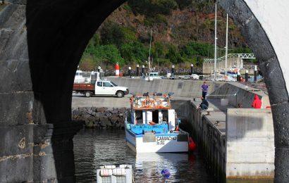 Pesca de goraz proibida nos Açores até 31 de dezembro