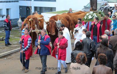 BÊNÇÃO DE ANIMAIS / ROSAIS / FESTA DE SANTO ANTÃO – Ilha de São Jorge (reportagem fotográfica)