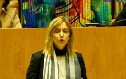 Planear e gerir de forma sustentável os recursos hídricos é o principal objetivo do Plano de Gestão da Rede Hidrográfica dos Açores, afirma Marta Guerreiro