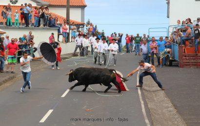 TOURADA À CORDA – SANTO ANTÓNIO – Ilha de São Jorge (c/ reportagem fotográfica)