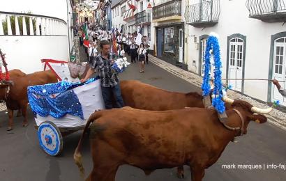 CORTEJO DA PASSAGEM DE TESTEMUNHO AO MORDOMO DO BODO DE LEITE DO ANO SEGUINTE – Vila do Topo – Ilha de São Jorge (c/ vídeo)
