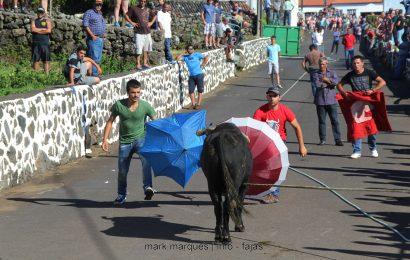 TOURADA À CORDA – FESTAS DE SANTA ANA – BEIRA – Ilha de São Jorge. (c/ reportagem fotográfica)