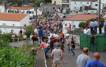 II TOURADA À CORDA – FESTAS DE SANTA ANA – BEIRA – Ilha de São Jorge (c/ reportagem fotográfica)