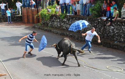 TOURADA À CORDA – BOA HORA (Santo Amaro) – Ilha de São Jorge (c/ reportagem fotográfica)
