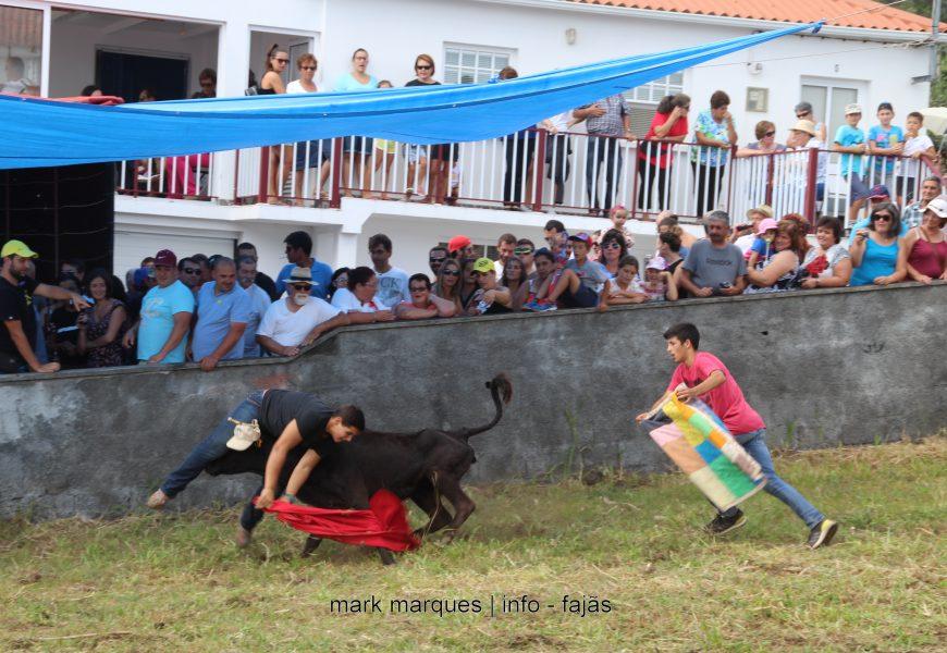 GARRAIADA NA FAJÃ GRANDE / CALHETA – Ilha de São Jorge (c/ reportagem fotográfica)
