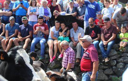 AS TRADICIONAIS ARREMATAÇÕES NA FESTA DA FAJÃ DA CALDEIRA DE SANTO CRISTO – Ilha de São Jorge (c/ vídeo)