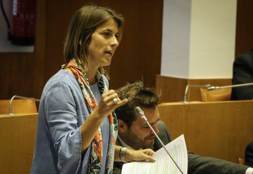CDS-PP defende: Mais do que opções de escolha cantinas públicas têm que servir refeições saudáveis e equilibradas