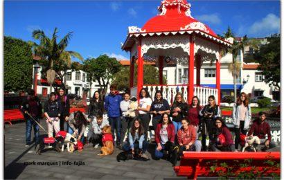 CAMPANHA DE ADOÇÃO ANIMAL – Jardim da República – Vila das Velas – Ilha de São Jorge