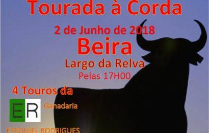 TOURADA À CORDA NO LUGAR DA RELVA/BEIRA – VELAS – Ilha de São Jorge (Próximo Sábado dia 2 de Junho)