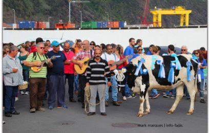 Presidente do Governo concede tolerância de ponto nas ilhas do Triângulo na terça-feira do Espírito Santo (22 de Maio)
