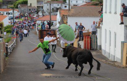 TOURADA À CORDA – BEIRA / VELAS – Ilha de São Jorge (c/ reportagem fotográfica)