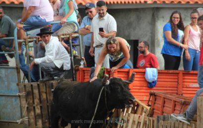 1ª TOURADA À CORDA – FESTAS DE SANTA ANA – Beira / Velas – Ilha de São Jorge (c/ reportagem fotográfica)