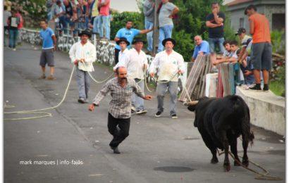 2ª TOURADA À CORDA – FESTAS DE SANTA ANA – Beira / Velas – Ilha de São Jorge (c/ reportagem fotográfica)