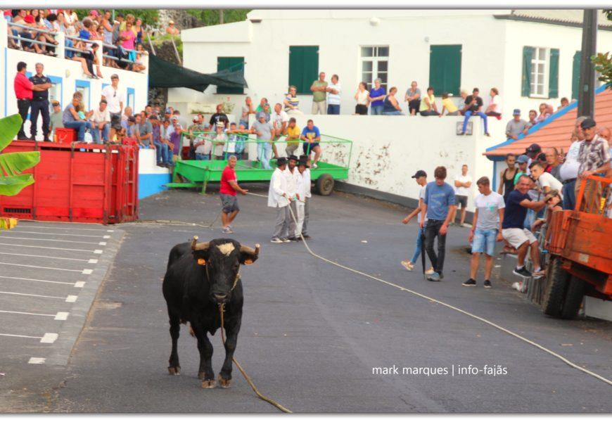 TOURADA À CORDA – Ribeira do Nabo / Urzelina – Ilha de São Jorge (c/ reportagem fotográfica)