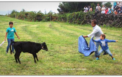 GARRAIADA NA FAJÃ DO OUVIDOR – Norte Grande – Ilha de São Jorge (c/ reportagem fotográfica)