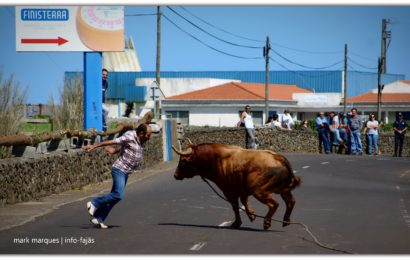 TOURADA À CORDA – Freguesia de Santo Antão – Ilha de São Jorge (c/ reportagem fotográfica)