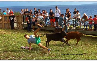 """""""BEZERRADA"""" – Fajã Grande / Calheta – Ilha de São Jorge (c/ vídeo)"""