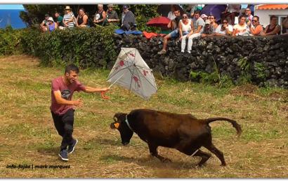 """""""VACADA"""" NAS FESTAS DA FAJÃ DO OUVIDOR – Ilha de São Jorge (c/ vídeo)"""