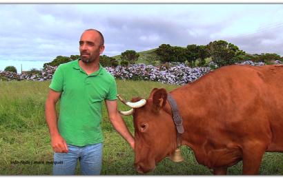 ANTÓNIO BRASIL – CRIADOR DE GADO BOVINO DA RAÇA RAMO GRANDE – Norte Pequeno – Ilha de São Jorge (c/ vídeo)