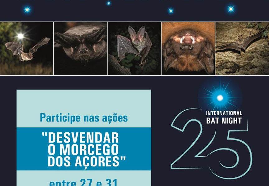 DESVENDAR O MORCEGO DOS AÇORES! – Ilha de São Jorge (dia 1 de Setembro)